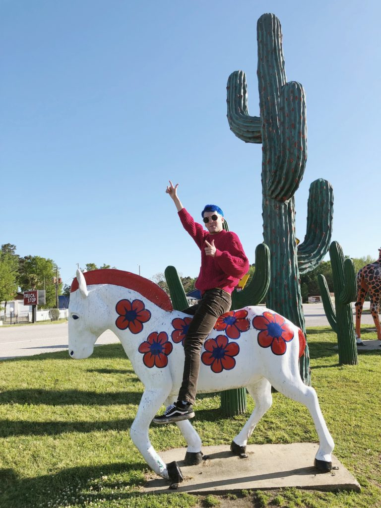 Horse and Cactus at South of the Border roadside attraction