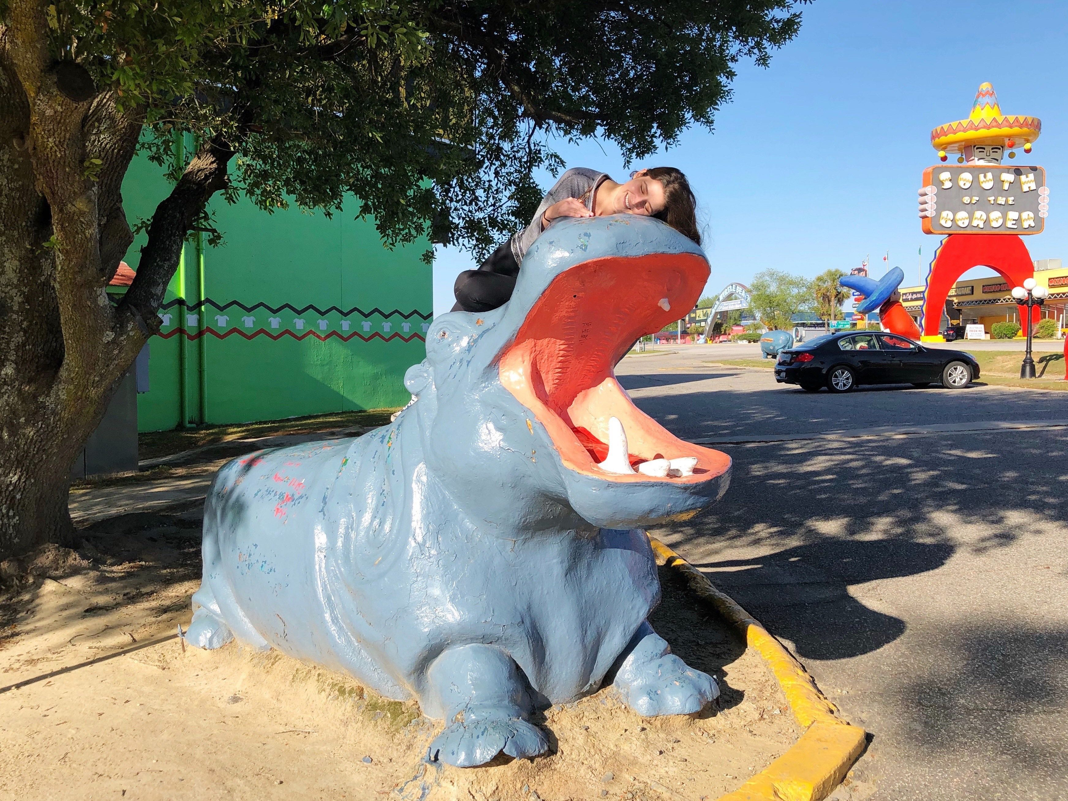 South of the Border Hippo